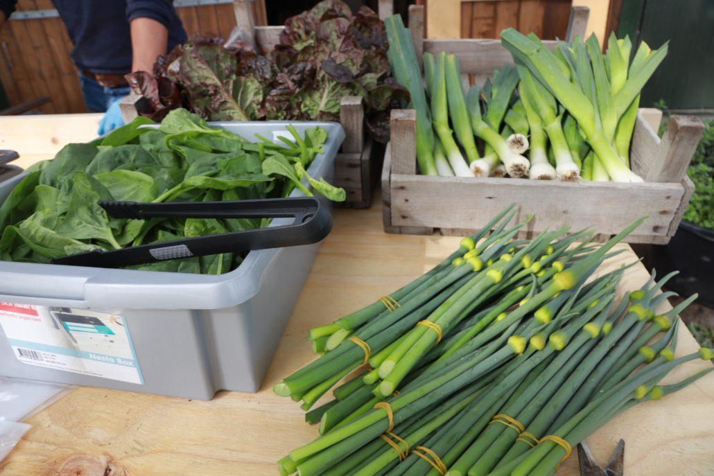 Joel Yn'e Sinne Farm verkoop groenten elke zaterdag