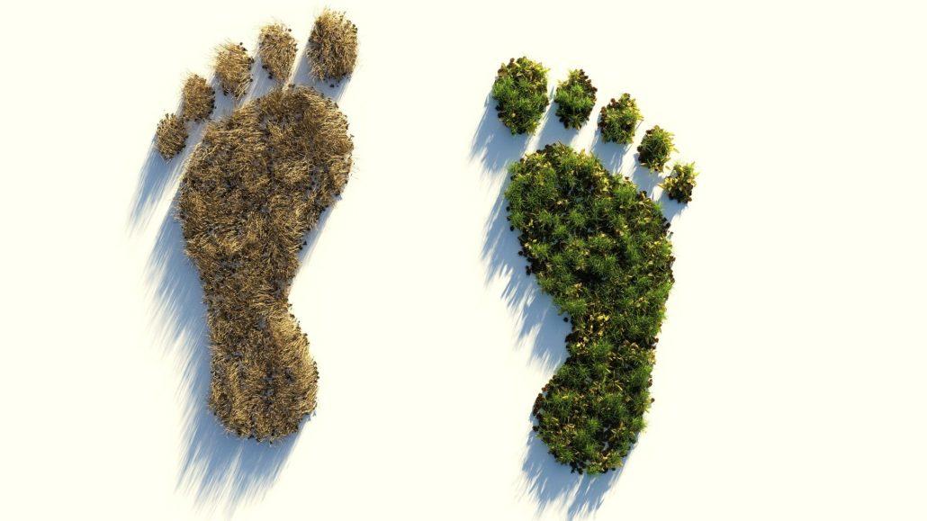 Hoe groot is jouw voetafdruk. Foto: Pixabay