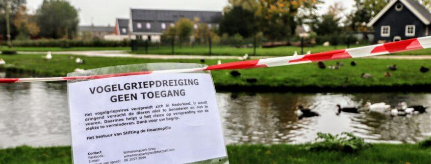 Grou Wilhelminapark Hoanepôle