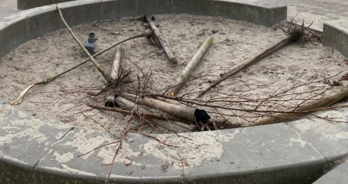 Vernieling boompjes basisscholen Grou