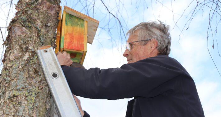 Erik Havik hangt een vrolijk gekleurd nestkastje op