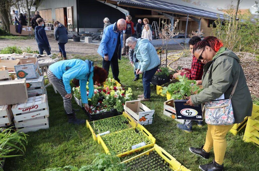 Plantjesmarkt Yn'e Sinnefarm trekt volop liefhebbers