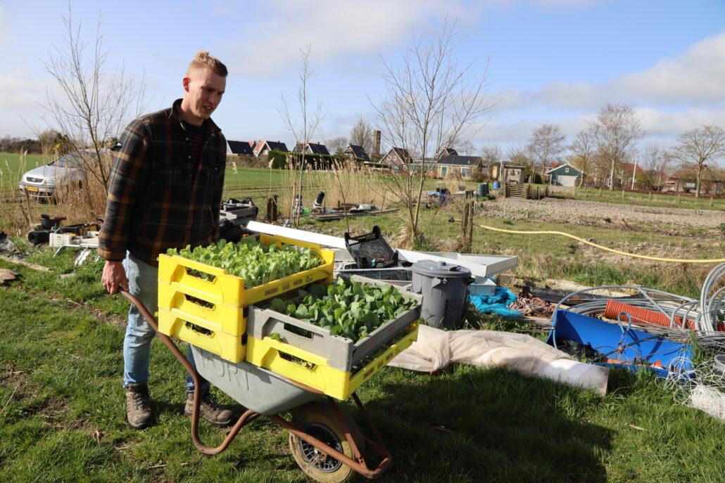 Plantjesmarkt Yne Sinnefarm Grou in Jirnsum