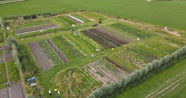 Dronefotografie Friesland Press4All